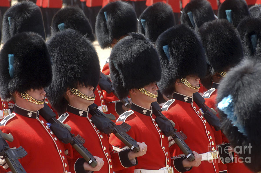 British Army Photograph - Irish Guards March Pass During The Last by Andrew Chittock