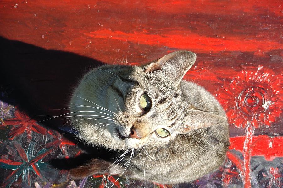 Cat Painting - Irisha On A Primitive Landscape by Raul Gubert