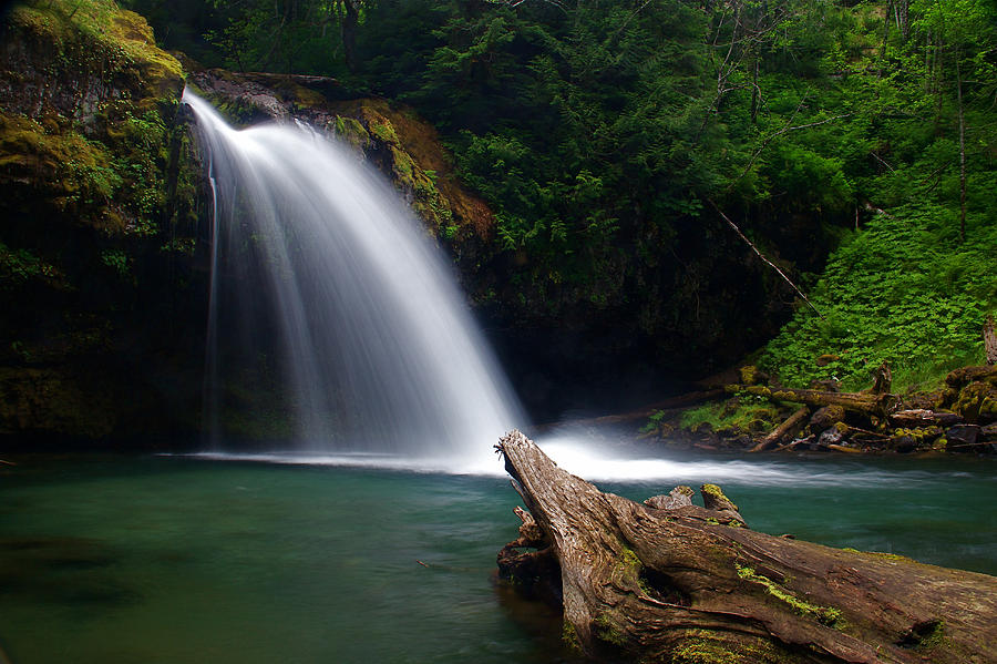 Falls Photograph - Iron Creek Falls 3 by Marcus Angeline