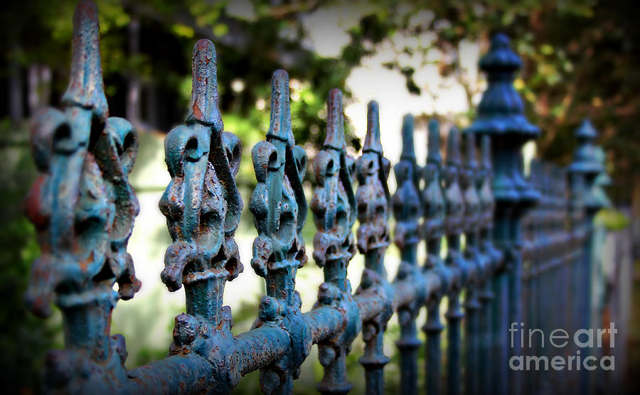 Fence Photograph - Iron Fence by Perry Webster
