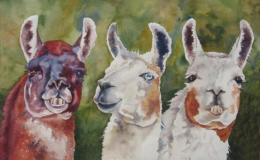 Is Your Mama A Llama Painting By Robin Hegemier
