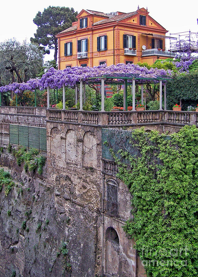 Italian House With Wisteria Vine Photograph By Jack Schultz