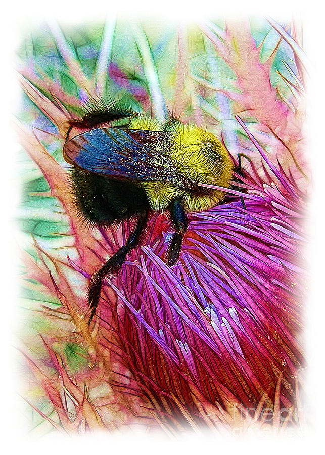 Bumblebee Photograph - Ive Fallen Into A Thistle And I Cant Get Out by Judi Bagwell