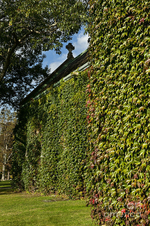 Connecticut Photograph - Ivy Covered Chapel by John Greim