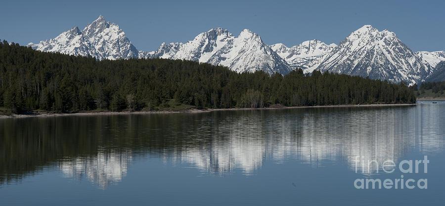 Bronstein Photograph - Jackson Lake by Sandra Bronstein