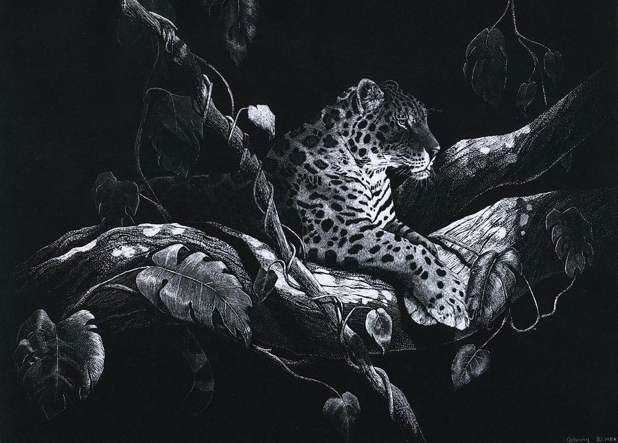 Jaguar Drawing - Jaguar by Bill Gehring