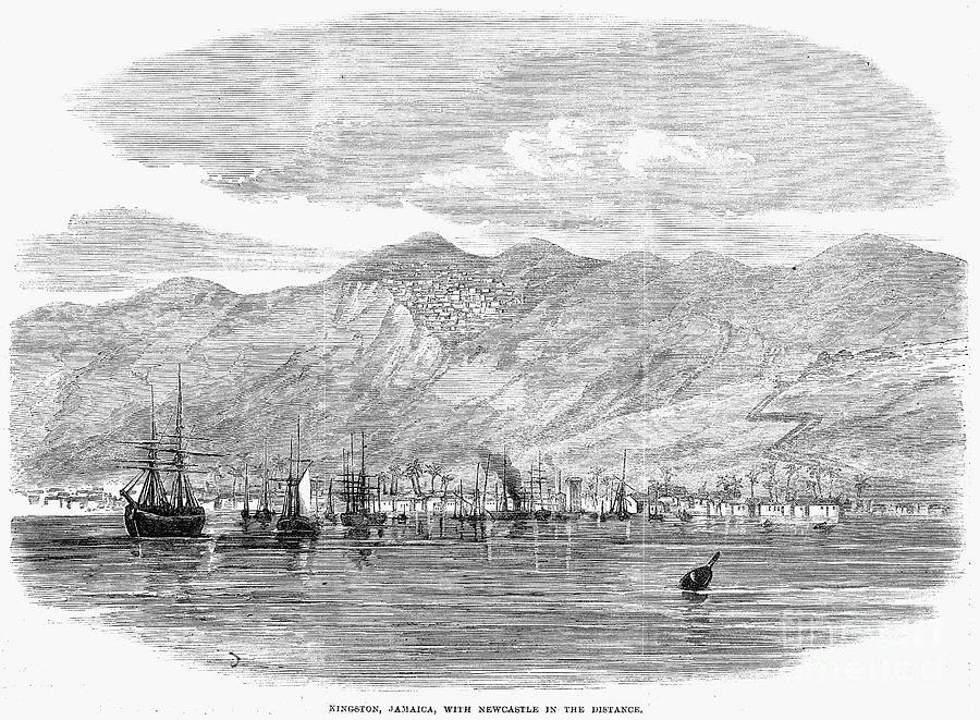 1865 Photograph - Jamaica: Kingston, 1865 by Granger
