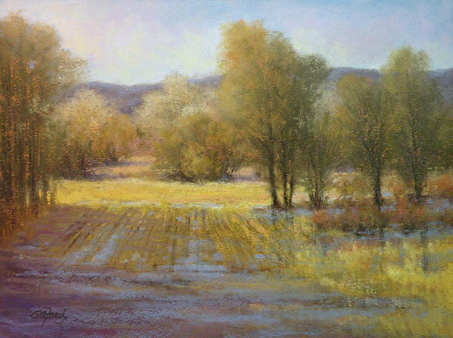 Painting Painting - January Rains by Paula Ann Ford
