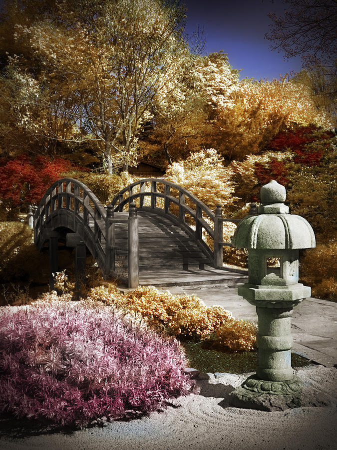 Japanese Garden Photograph - Japanese Foot Bridge by Patrick Pope
