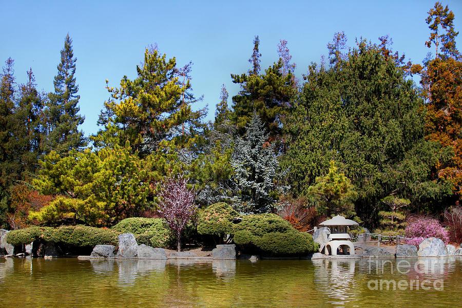 Japanese friendship garden san jose california 7d12781 for Japanese koi garden san jose