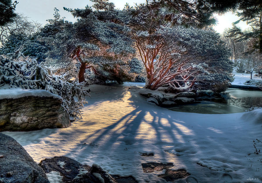 Winter Photograph - Japanese Garden At Sunrise by Stephen EIS