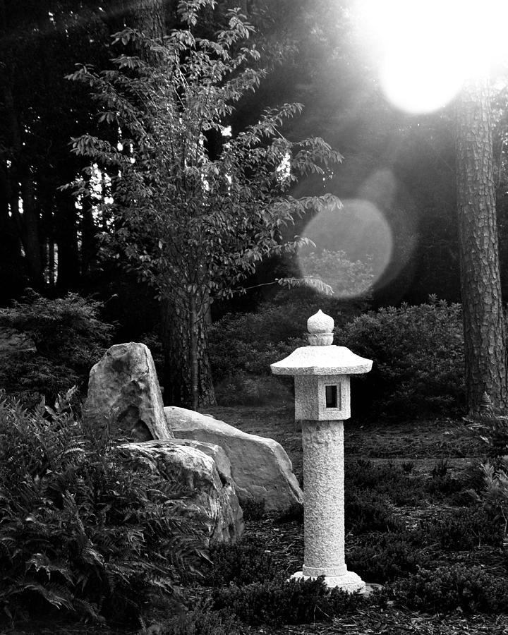 Miyazaki photograph japanese garden black and white by tom leach