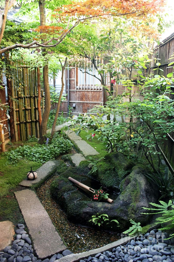 Japanese Garden Photograph By Evgeny Pisarev
