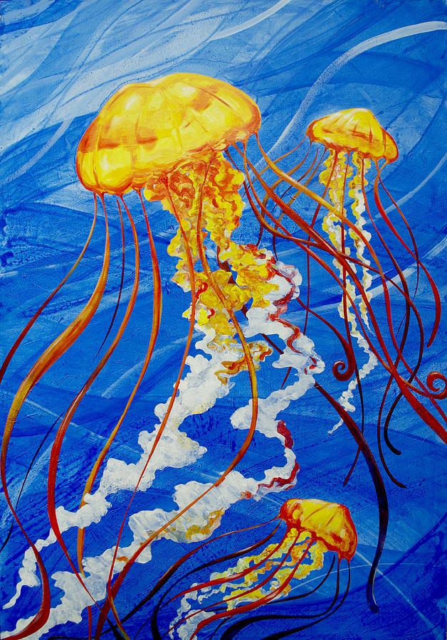 Jellyfish by John Gibbs