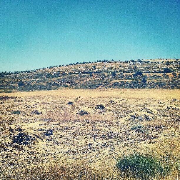 Instagram Photograph - #jo #jordan #amman #airportroad by Abdelrahman Alawwad