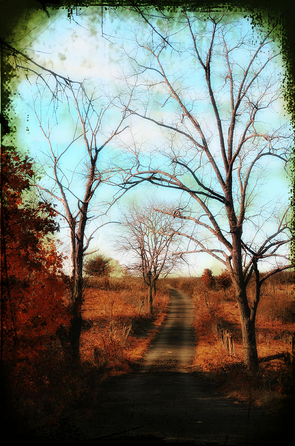 Dirt Road Photograph - Journey To The Past by Bill Cannon