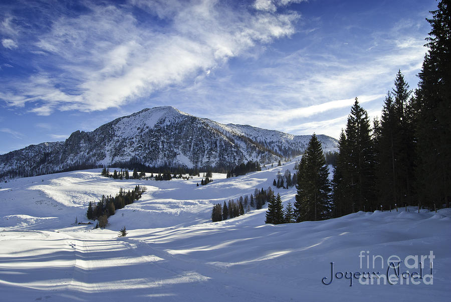 Winter Photograph - Joyeux Noel Austria Europe by Sabine Jacobs