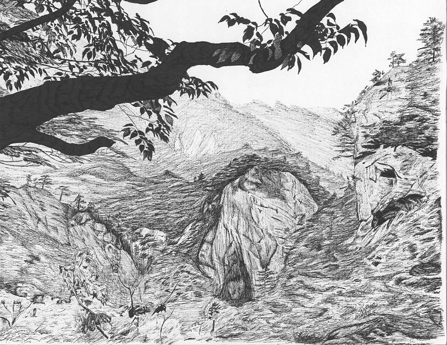 Jungle mountain landscape drawing by reppard powers for What is landscape drawing
