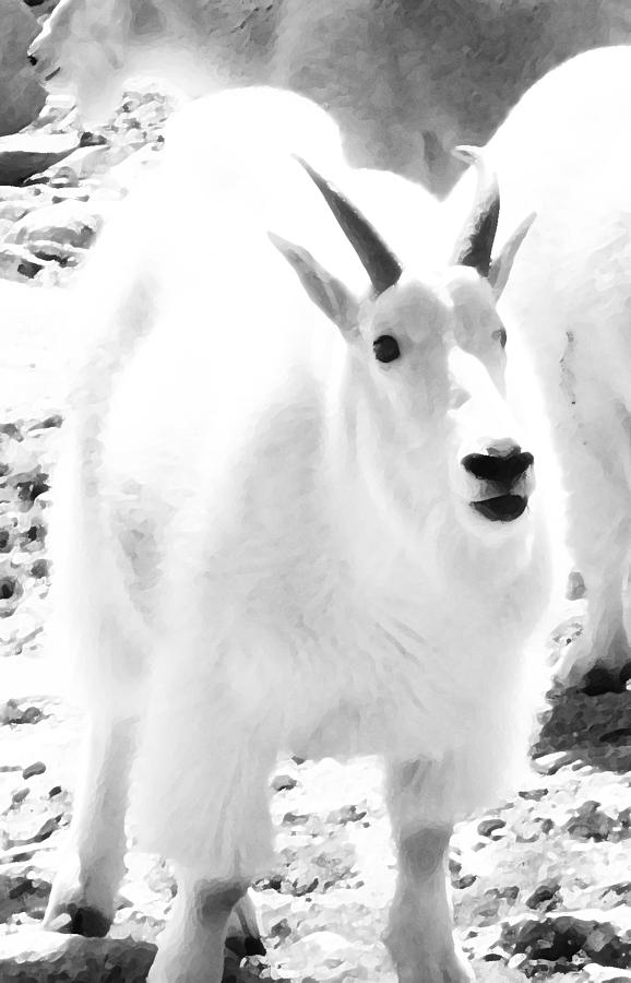 Abstract Digital Art - Junior Mountain Goat by Bill Kennedy