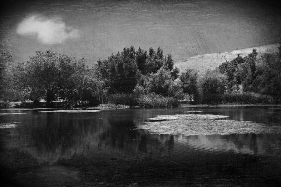 Pond Photograph - Just A Feeling by Laurie Search