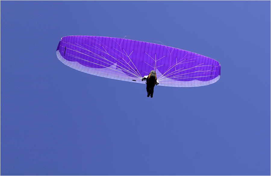 Paraglider Photograph - Just Hanging by Nigel Jones