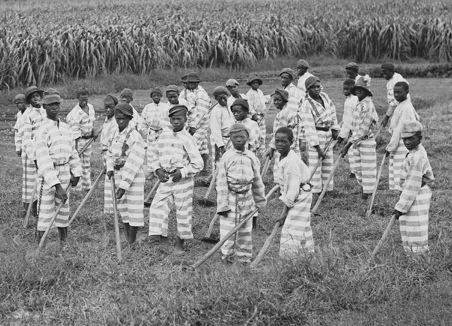 History Photograph - Juvenile Convicts At Work In The Fields by Everett