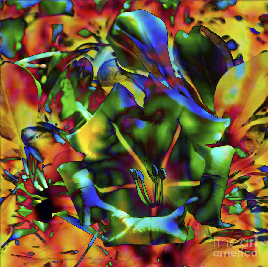 Kaleidoscope by Patricia Griffin Brett