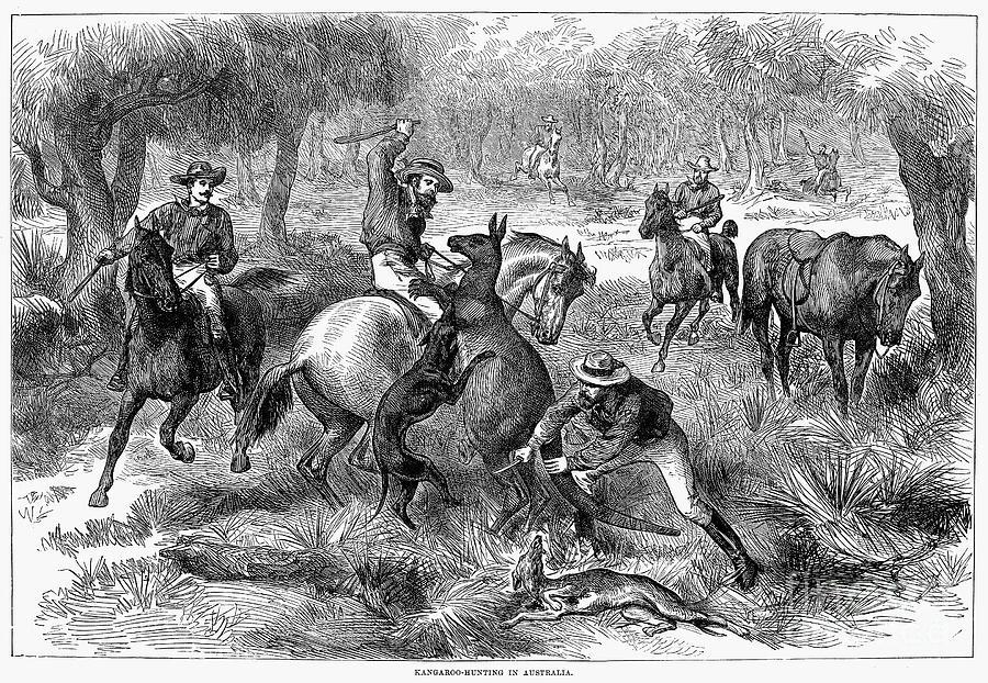1876 Photograph - Kangaroo Hunting, 1876 by Granger