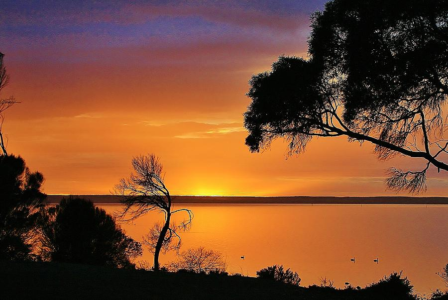 Australian Landscape Photograph - Kangaroo Island - Sunrise by David Barringhaus