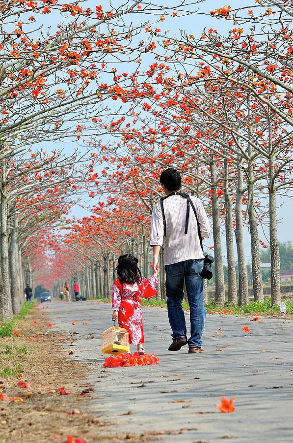 Child Photograph - Kapok Road by Frank Chen