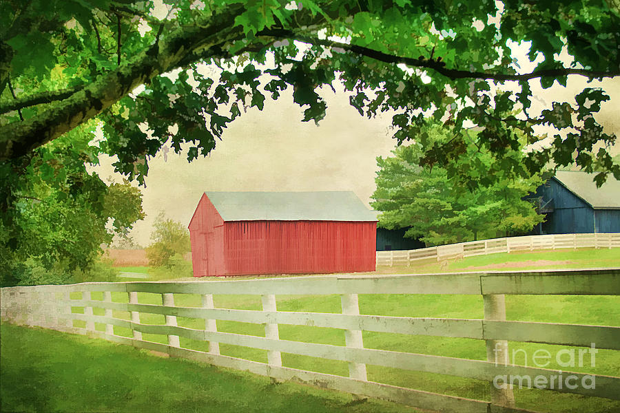 Agriculture Photograph - Kentucky Country Side by Darren Fisher