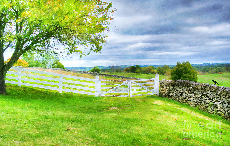 Kentucky Countryside Photograph By Darren Fisher