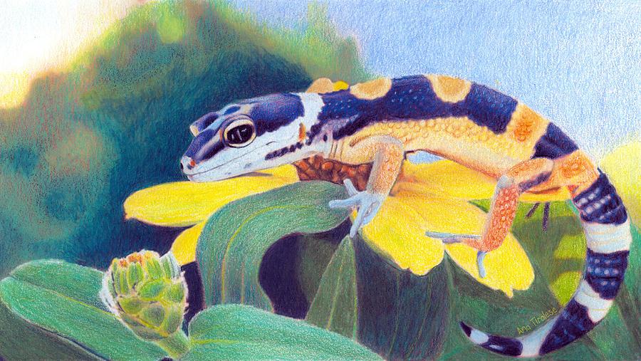 Kiiro The Gecko by Ana Tirolese