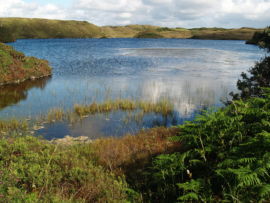Lake Photograph - Kiltooris Lough by Steve Watson