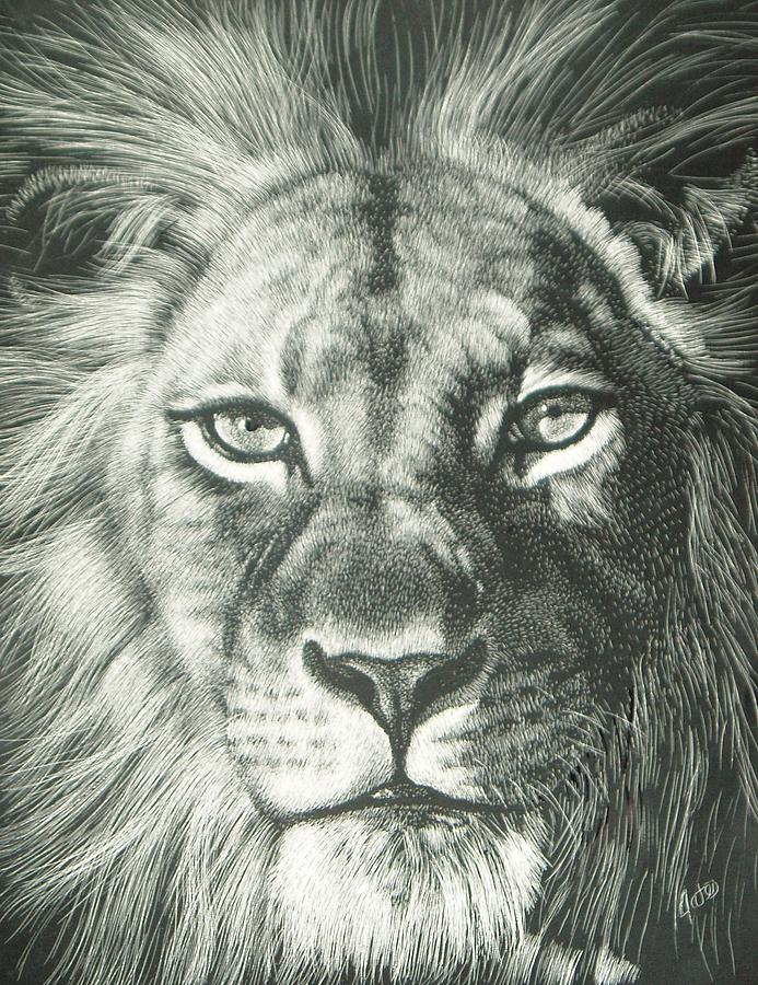 Lion Mixed Media - King 2 by Joanna Gates