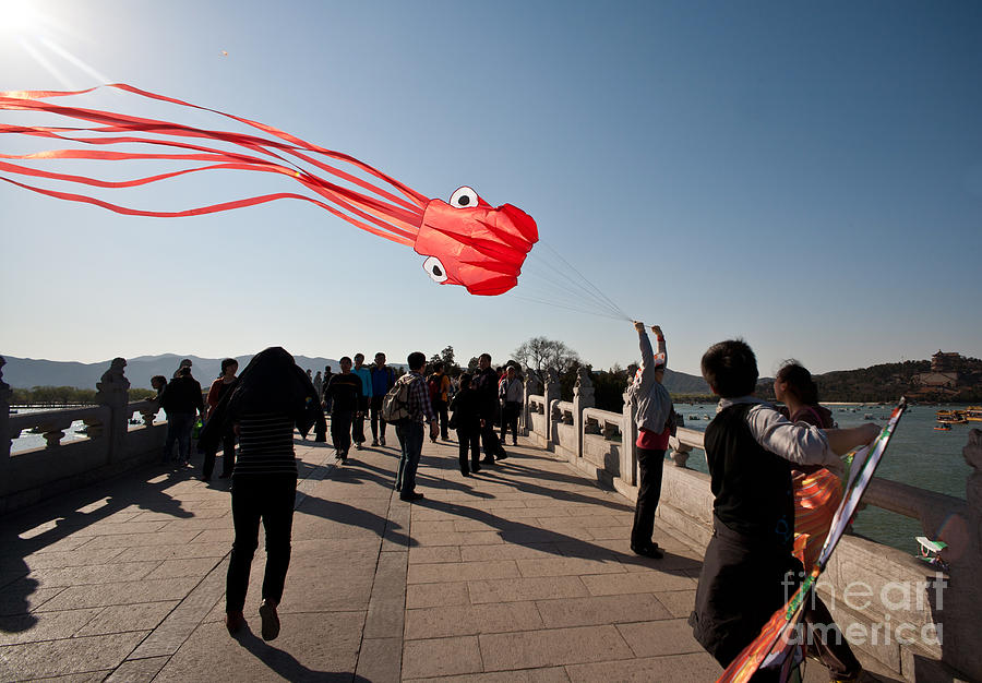 Asia Photograph - Kite Aloft by Mike Reid