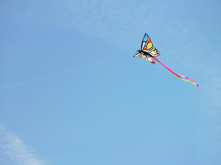 Horizontal Photograph - Kite Flying Aginst Blue Sky by Siri Stafford