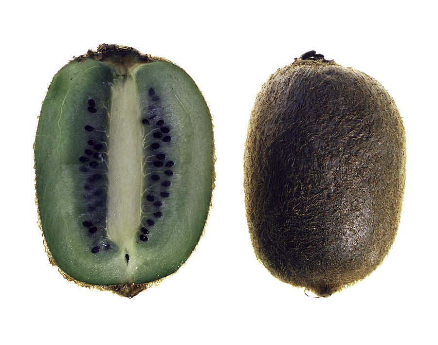 Fruit Photograph - Kiwi by Nathaniel Kolby