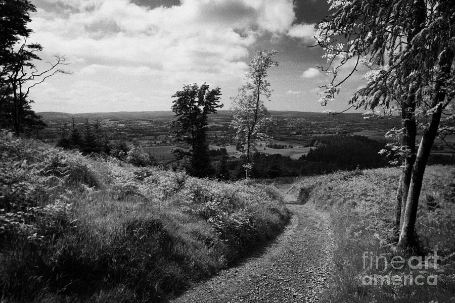 Hill Photograph - Knockmany Hill Clougher Valley County Tyrone Northern Ireland by Joe Fox