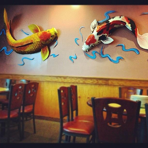 Good Koi Photograph   #koi #fish On The #wall ! #interesting By Manan