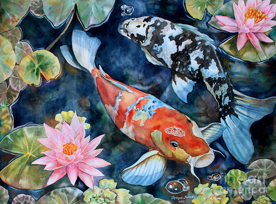 Koi with water lilies painting by tanya jacobsz for How to paint a fish