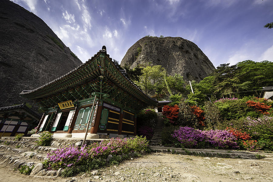 Horizontal Photograph - Korean Buddhist Temple With Flowers And Mountains by Thomas Arthur