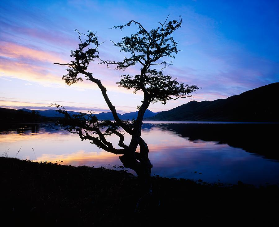 Bare Photograph - Kylemore Lake, Connemara, Co Galway by The Irish Image Collection