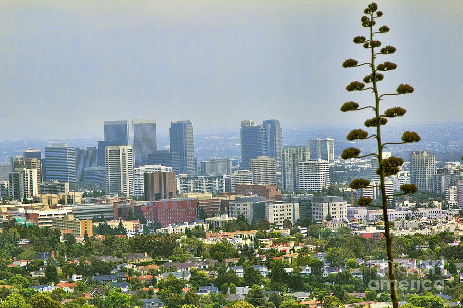 Getty Photograph - L.a County by Chuck Kuhn