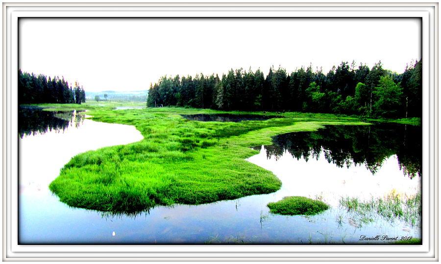 Lakes Photograph - Lac Williams Quebec  by Danielle  Parent