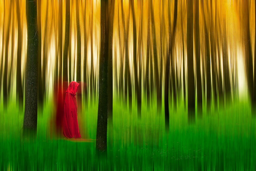 Trees Photograph - Lady In Red - 3 by Okan YILMAZ