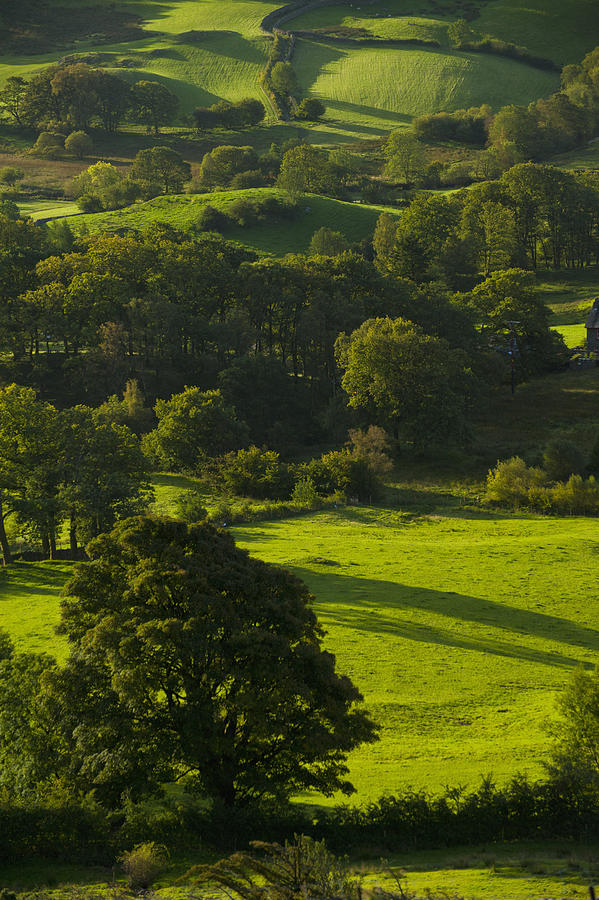 Colour Image Photograph - Lake District National Park, Cumbria by Axiom Photographic