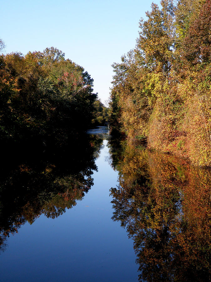 Lake Drummond Photograph - Lake Drummond Canal by Feva  Fotos