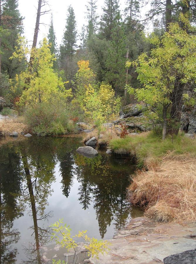 Nature Photograph - Lake in Sierras by Naxart Studio