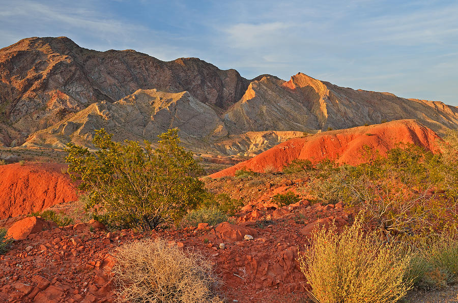 Area Photograph - Lake Mead Recreation Area by Dean Pennala